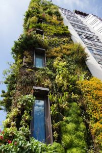 Green-and-eco-friendly-office-spaces-reduce-running-cost-for-businesses